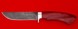 """Охотничий нож """"Грибник-2"""", клинок дамасская сталь, рукоять амарант"""